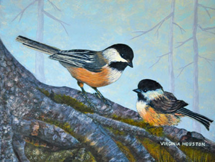 Black-Capped Chickadees- Mother and Baby